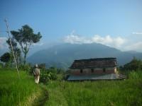 ネパール山間部の農村風景